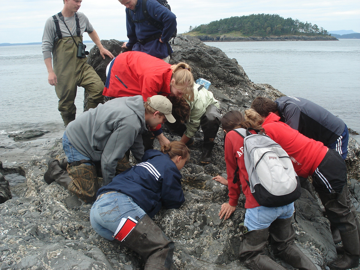 Group of students examining a rock connected to a body of water