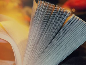 Close up of book pages