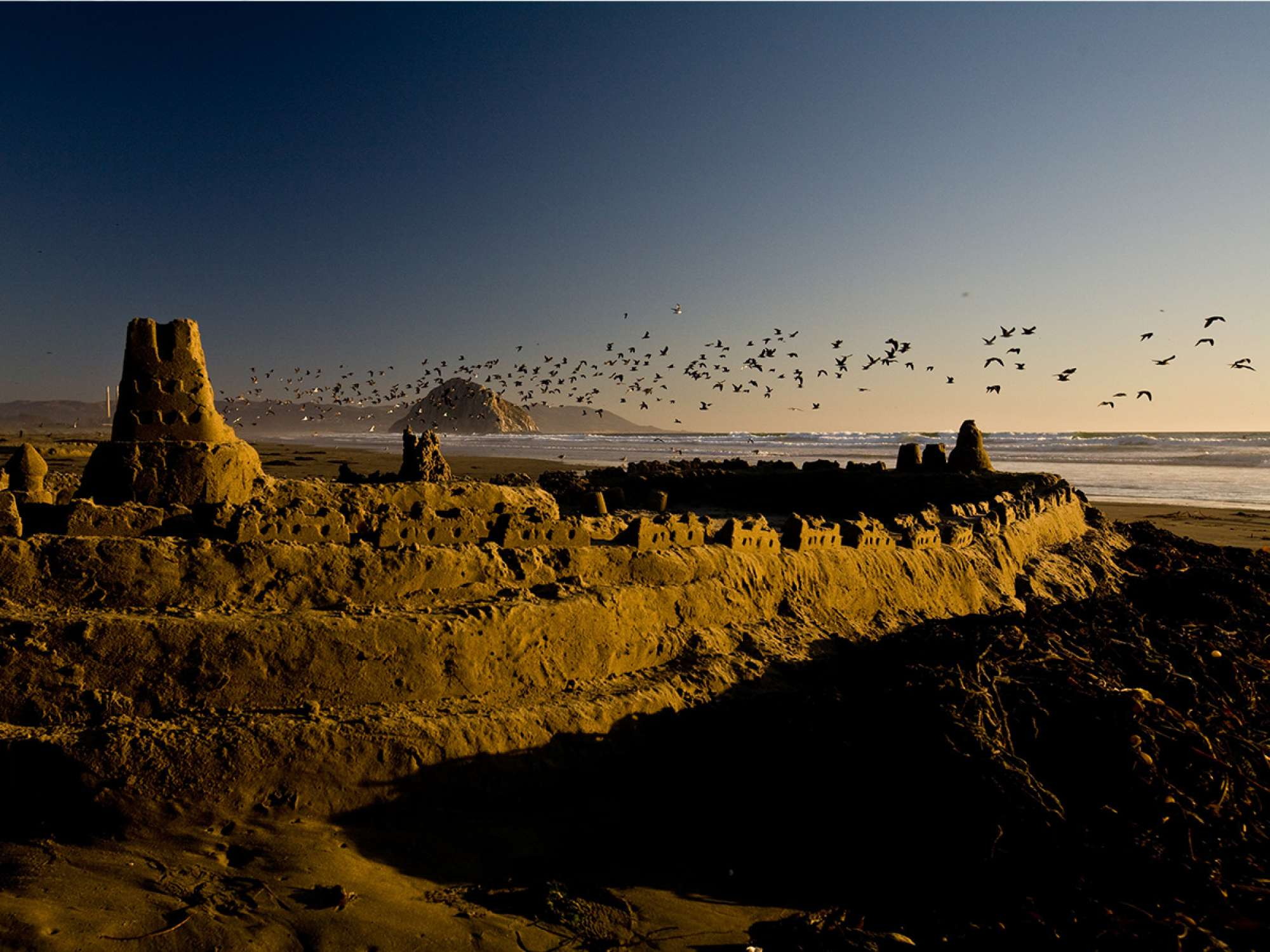 Sunset picture of seagulls flying above sand castle