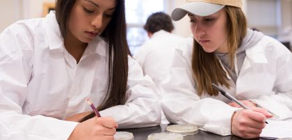 Students working on biology homework