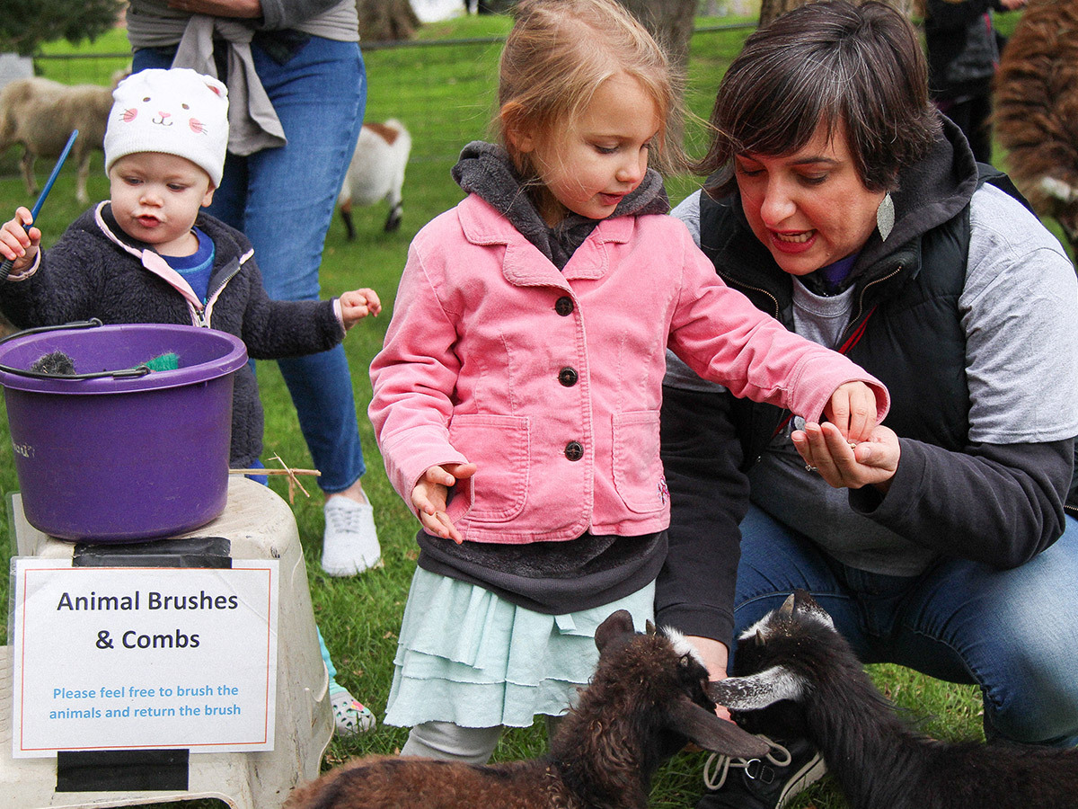 homecoming petting zoo image