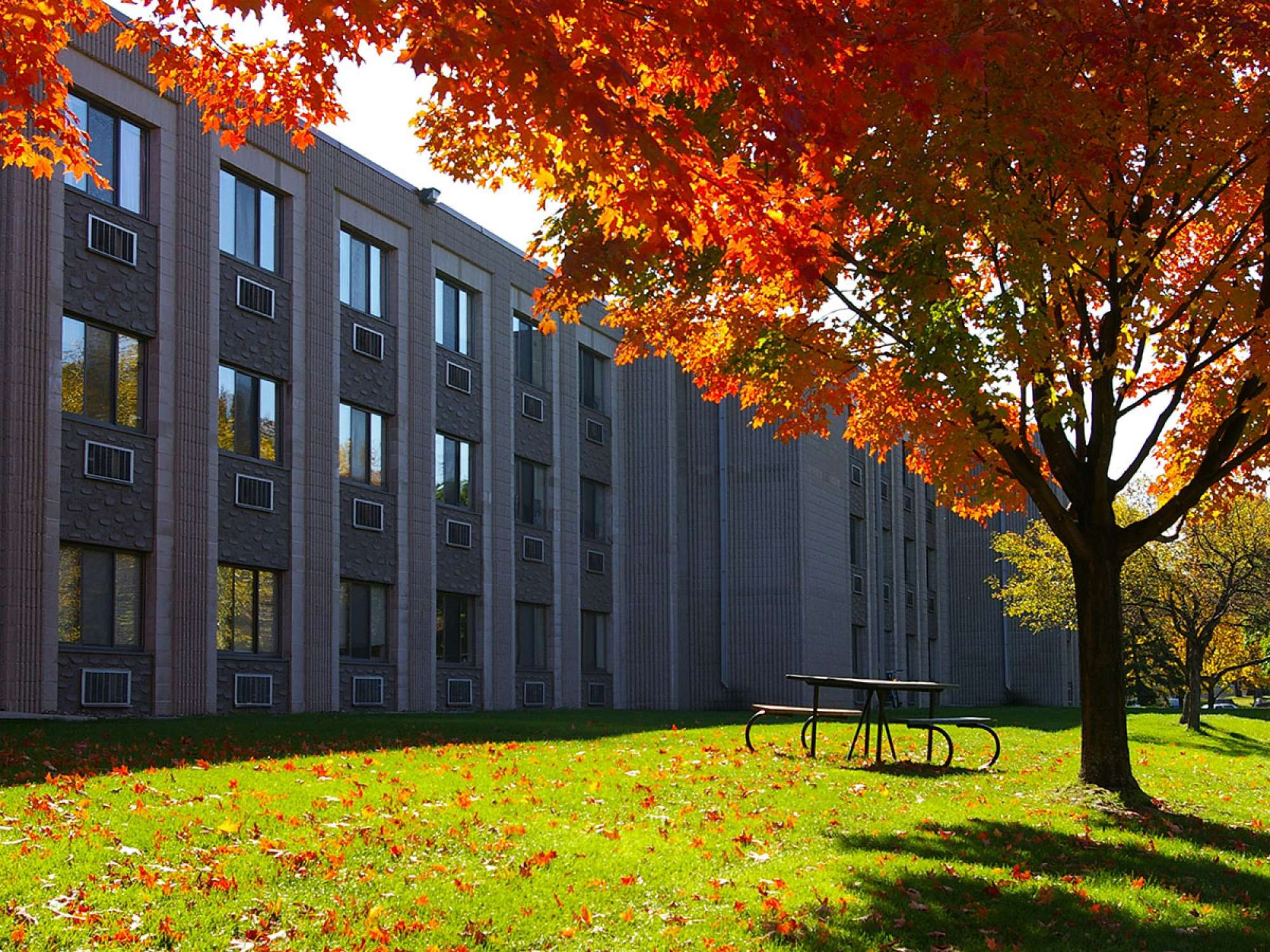 Exterior view of Knutson Hall