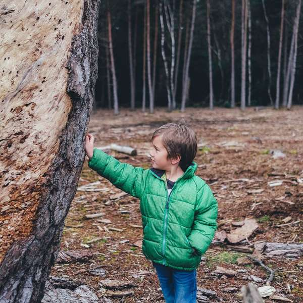 Little boy leaning against a tree