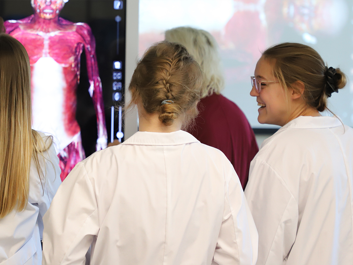 Nursing students examining digital cadaver